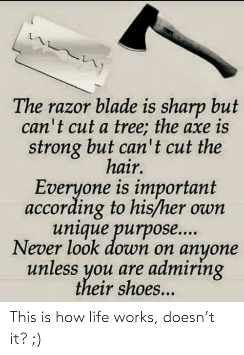 look down: The razor blade is sharp but  can't cut a tree; the axe is  strong but can't cut the  hair.  Everyone is important  according to his/her own  unique purpose...  Never look down on anyone  unless you are admiring  their shoes... This is how life works, doesn't it? ;)