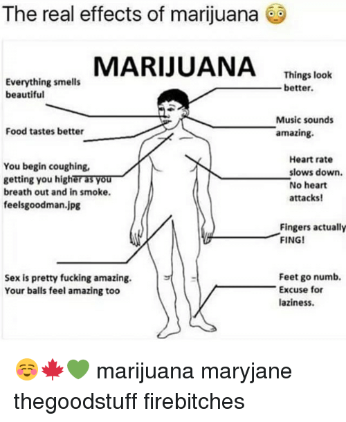 feelsgoodman: The real effects of marijuana  MARIJUANA Thing lok  Everything smells  beautiful  Things look  better  Music sounds  amazing.  Food tastes better  You begin coughing,  getting you higher as you  breath out and in smoke  feelsgoodman.jpg  Heart rate  slows down.  No heart  attacks!  Fingers actually  FING!  Feet go numb.  Sex is pretty fucking amazing.  Your balls feel amazing too  Excuse for  aziness ☺️🍁💚 marijuana maryjane thegoodstuff firebitches