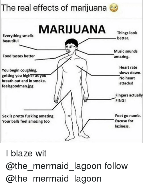 feelsgoodman: The real effects of marijuana  MARIJUANA Thing lok  Everything smells  beautiful  Things look  better  Music sounds  amazing.  Food tastes better  You begin coughing,  getting you higher as you  breath out and in smoke.  feelsgoodman.jpg  Heart rate  slows down.  No heart  attacks!  Fingers actually  FINGI  Feet go numb.  Sex is pretty fucking amazing.  Your balls feel amazing too  Excuse for  laziness. I blaze wit @the_mermaid_lagoon follow @the_mermaid_lagoon
