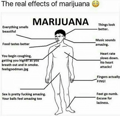 feelsgoodman: The real effects of marijuana  MARIJUANA  Things look  Everything smells  better.  beautiful  Music sounds  Food tastes better  amazing  Heart rate  You begin coughing,  slows down.  getting you highera3VO  No heart  breath out and in smoke.  attacks!  feelsgoodman.jpg  Fingers actually  FING!  Feet go numb.  Sex is pretty fucking amazing.  Excuse for  Your balls feel amazing too  laziness.