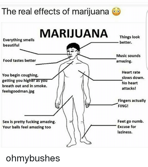 feelsgoodman: The real effects of marijuana  MARIJUANA Thng leok  Everything smells  beautiful  Things look  better  Music sounds  amazing.  Food tastes better  You begin coughing,  getting you higher as you  breath out and in smoke  feelsgoodman.jpg  Heart rate  slows down.  No heart  attacks!  Fingers actually  FING!  Sex is pretty fucking amazing.  Your balls feel amazing too  Feet go numb.  Excuse for  laziness. ohmybushes