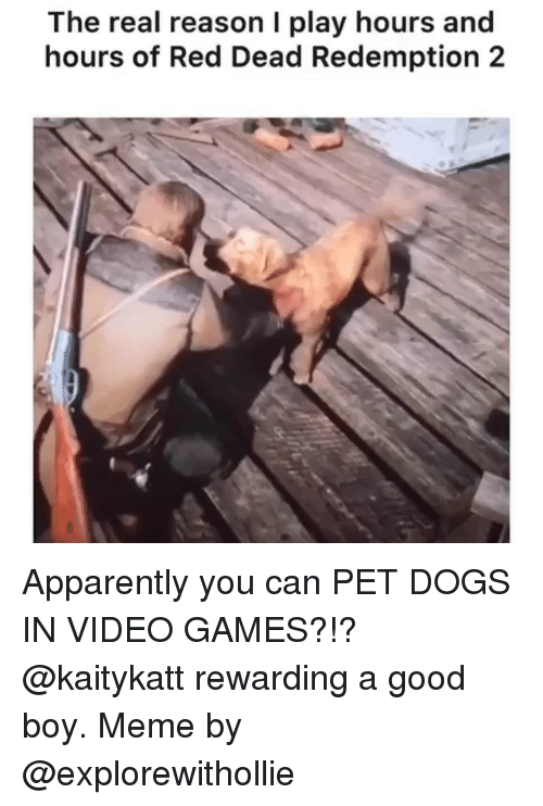 Boy Meme: The real reason I play hours and  hours of Red Dead Redemption 2 Apparently you can PET DOGS IN VIDEO GAMES?!? @kaitykatt rewarding a good boy. Meme by @explorewithollie