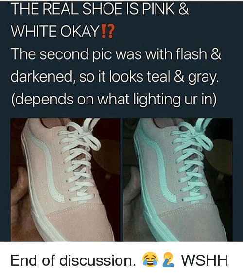 Memes, Wshh, and Okay: THE REAL SHOE IS PINK &  WHITE OKAY!?  The second pic was with flash &  darkened, so it looks teal & gray  (depends on what lighting ur in) End of discussion. 😂🤦‍♂️ WSHH