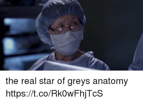 Memes, Grey's Anatomy, and Star: the real star of greys anatomy https://t.co/Rk0wFhjTcS