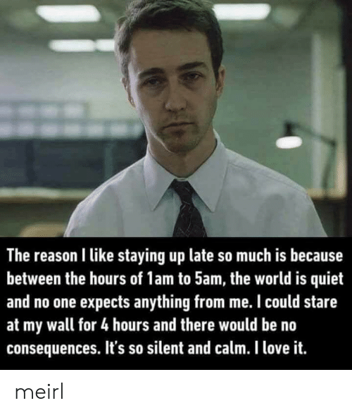 the hours: The reason I like staying up late so much is because  between the hours of 1am to 5am, the world is quiet  and no one expects anything from me. I could stare  at my wall for 4 hours and there would be no  consequences. It's so silent and calm. I love it. meirl