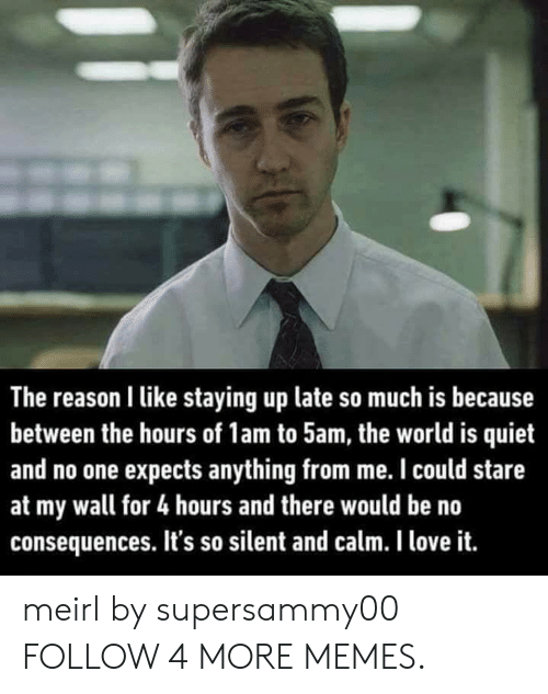 the hours: The reason I like staying up late so much is because  between the hours of 1am to 5am, the world is quiet  and no one expects anything from me. I could stare  at my wall for 4 hours and there would be no  consequences. It's so silent and calm. I love it. meirl by supersammy00 FOLLOW 4 MORE MEMES.