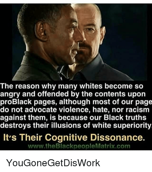 Memes, Racism, and Black: The reason why many whites become so  angry and offended by the contents upon  proBlack pages, although most of our page  do not advocate violence, hate, nor racism  against them, is because our Black truths  destroys their illusions of white superiority  It's Their Cognitive Dissonance.  www.theBlackpeopleMatrix.com YouGoneGetDisWork