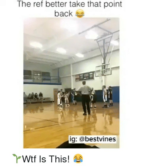 Memes, The Ref, and 🤖: The ref better take that point  back  ig: @bestvines ⠀ 🌱Wtf Is This! 😂