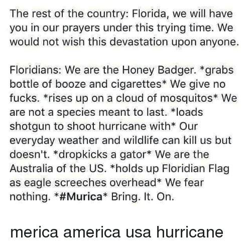 "bringed: The rest of the country: Florida, we will have  you in our prayers under this trying time. We  would not wish this devastation upon anyone.  Floridians: We are the Honey Badger. *grabs  bottle of booze and cigarettes* We give no  fucks. *rises up on a cloud of mosquitos We  are not a species meant to last. loads  shotgun to shoot hurricane with* Our  everyday weather and wildlife can kill us but  doesn't. *dropkicks a gator We are the  Australia of the US. *holds up Floridian Flag  as eagle screeches overhead* We fear  nothing. *#Murica"" Bring. It. On. merica america usa hurricane"