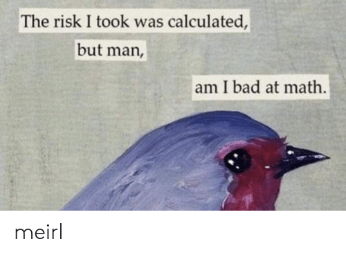 Risk I Took Was Calculated But Man Am I Bad At Math: The risk I took was calculated,  but man,  am I bad at math. meirl