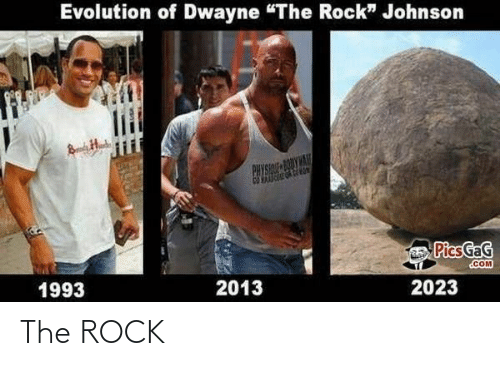 The Rock, Rock, and The: The ROCK