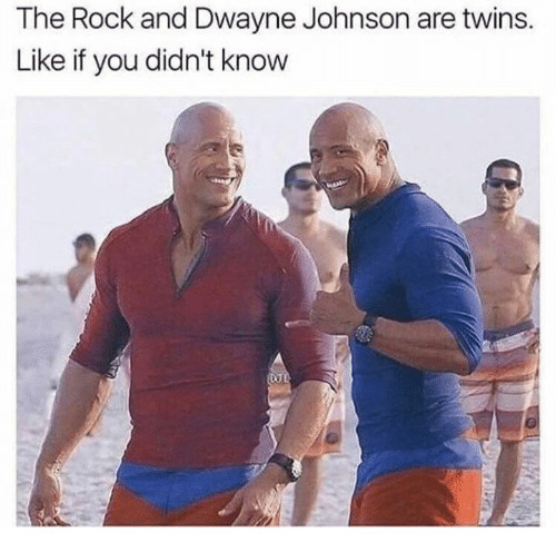 Dwayne Johnson, Memes, and The Rock: The Rock and Dwayne Johnson are twins.  Like if you didn't know
