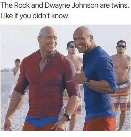 Dank, Dwayne Johnson, and The Rock: The Rock and Dwayne Johnson are twins.  Like if you didn't know