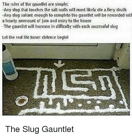 gauntlet: The rules of the gauntlet are simple:  Any slug that touches the salt walls will most likely die a fiery death  -Any slug valiant enough to complete the gauntll bo rewarded with  a hearty ammount of Jam and entry to the house  The gaunllet l Incease in difficully with cach successful slug  Let the real life tower defence beginl The Slug Gauntlet
