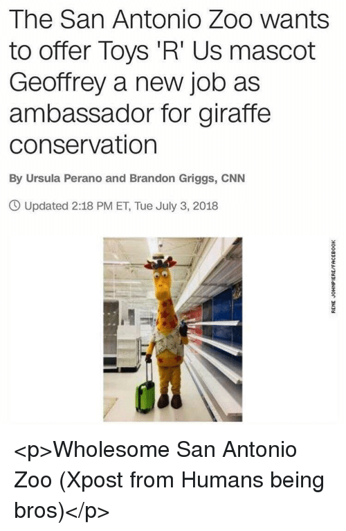 Toys R Us: The San Antonio Zoo wants  to offer Toys 'R' Us mascot  Geoffrey a new job as  ambassador for giraffe  conservation  By Ursula Perano and Brandon Griggs, CNN  O Updated 2:18 PM ET, Tue July 3, 2018 <p>Wholesome San Antonio Zoo (Xpost from Humans being bros)</p>