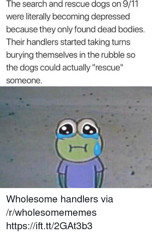 """dead bodies: The search and rescue dogs on 9/11  were literally becoming depressed  because they only found dead bodies.  Their handlers started taking turns  burying themselves in the rubble so  the dogs could actually """"rescue""""  someone Wholesome handlers via /r/wholesomememes https://ift.tt/2GAt3b3"""