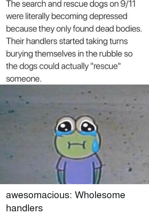 """dead bodies: The search and rescue dogs on 9/11  were literally becoming depressed  because they only found dead bodies.  Their handlers started taking turns  burying themselves in the rubble so  the dogs could actually """"rescue""""  someone awesomacious:  Wholesome handlers"""