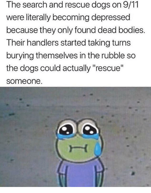 """dead bodies: The search and rescue dogs on 9/11  were literally becoming depressed  because they only found dead bodies.  Their handlers started taking turns  burying themselves in the rubble so  the dogs could actually """"rescue""""  someone"""
