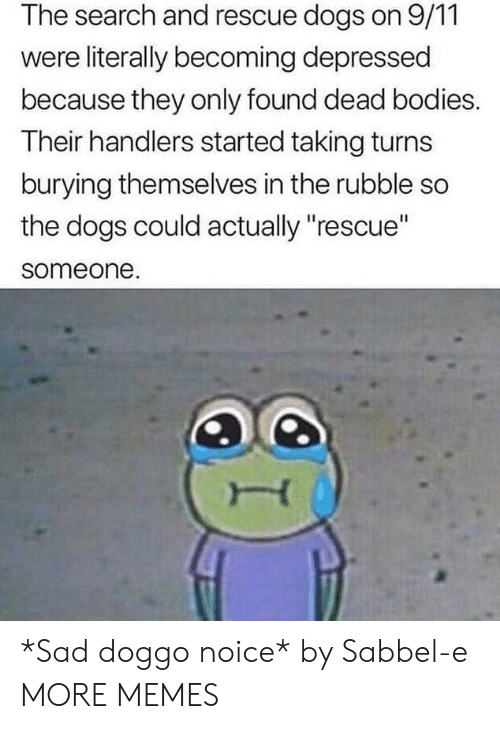"""dead bodies: The search and rescue dogs on 9/11  were literally becoming depressed  because they only found dead bodies.  Their handlers started taking turns  burying themselves in the rubble so  the dogs could actually """"rescue""""  someone. *Sad doggo noice* by Sabbel-e MORE MEMES"""