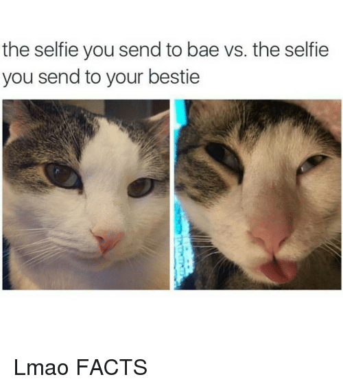 Bae, Funny, and Lmao: the selfie you send to bae vs. the selfie  you send to your bestie Lmao FACTS