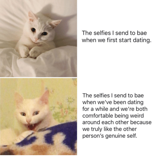 Bae, Being Weird, and Comfortable: The selfies I send to bae  when we first start dating.  The selfies I send to bae  when we've been dating  for a while and we're both  comfortable being weird  around each other because  we truly like the other  person's genuine self.