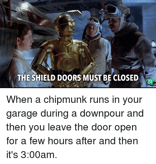 chipmunk: THE SHIELD DOORS MUST BE CLOSED When a chipmunk runs in your garage during a downpour and then you leave the door open for a few hours after and then it's 3:00am.
