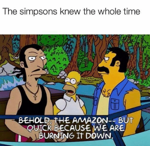 The Simpsons: The simpsons knew the whole time  BEHOLD, THE AMAZON--BUT  QUICKBECAUSE WE ARE  BURNING IT DOWN.