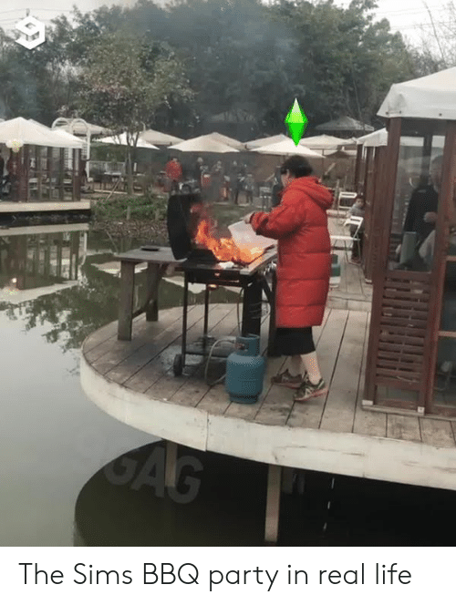 The Sims: The Sims BBQ party in real life