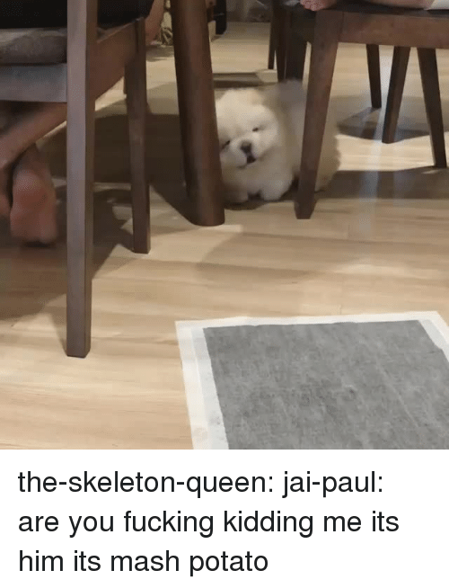 You Fucking Kidding Me: the-skeleton-queen:  jai-paul: are you fucking kidding me its him its mash potato