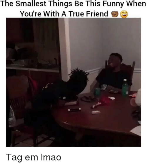 Funny, Lmao, and True: The Smallest Things Be This Funny When  You're With A True Friend Tag em lmao