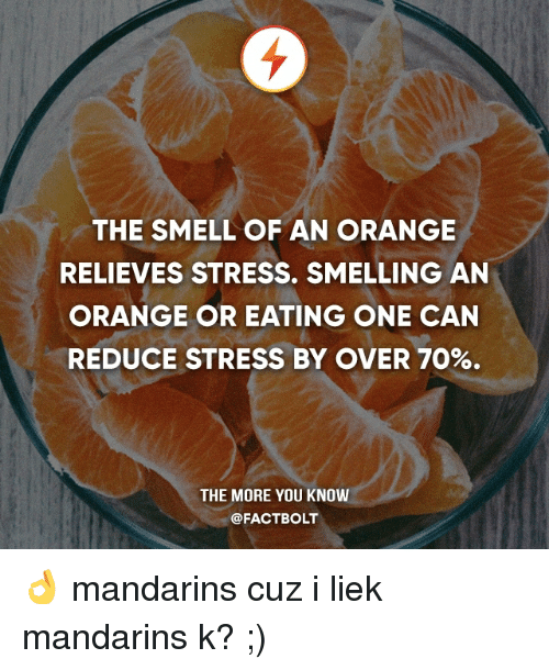 Memes, Smell, and The More You Know: THE SMELL OF AN ORANGE  RELIEVES STRESS. SMELLING AN  ORANGE OR EATING ONE CAN  REDUCE STRESS BY OVER 70%.  THE MORE YOU KNOW  @FACT BOLT 👌 mandarins cuz i liek mandarins k? ;)