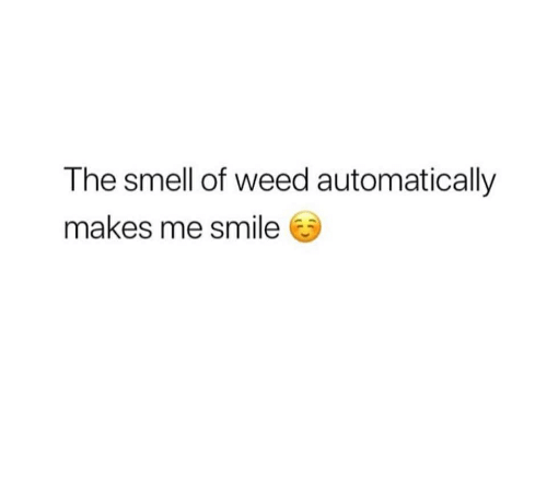 Memes, Smell, and Weed: The smell of weed automatically  makes me smile