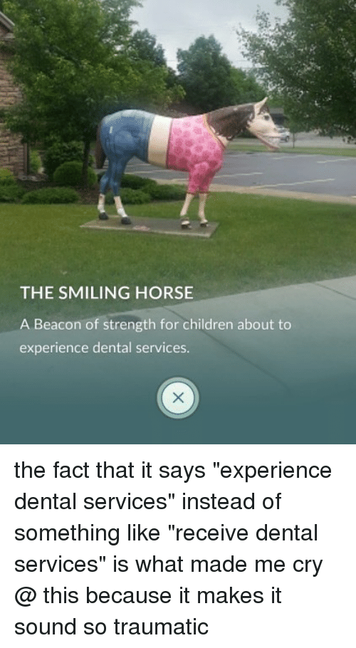 """Children, Ironic, and Horse: THE SMILING HORSE  A Beacon of strength for children about to  experience dental services. the fact that it says """"experience dental services"""" instead of something like """"receive dental services"""" is what made me cry @ this because it makes it sound so traumatic"""
