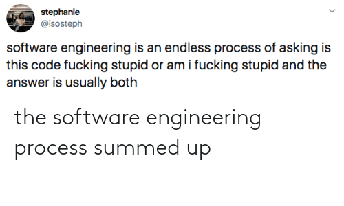 Engineering: the software engineering process summed up