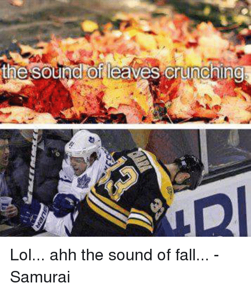 Fall, Hockey, and Lol: the Sound of leaves crunching Lol... ahh the sound of fall... - Samurai