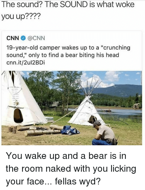"cnn.com, Head, and Wyd: The sound? The SOUND is what woke  you up????  CNN @CNN  19-year-old camper wakes up to a ""crunching  sound,"" only to find a bear biting his head  cnn.it/2ul2BDi You wake up and a bear is in the room naked with you licking your face... fellas wyd?"