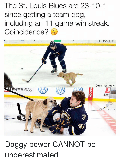National Hockey League (NHL): The St. Louis Blues are 23-10-1  since getting a team dog,  including an 11 game win streak  Coincidence?  @nhl_ref_logic  wireless W  TIR Doggy power CANNOT be underestimated