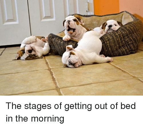 the stages of getting out of bed in the morning 3142301 the stages of getting out of bed in the morning funny meme on sizzle