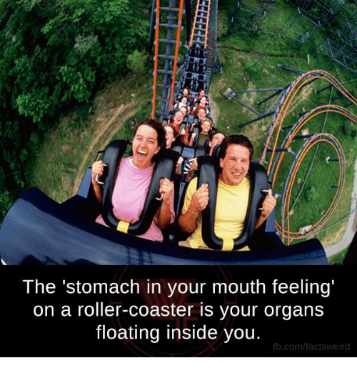 Rollers: The stomach in your mouth feeling'  on a roller-coaster is your organs  floating inside you.  fb.com/facts weird