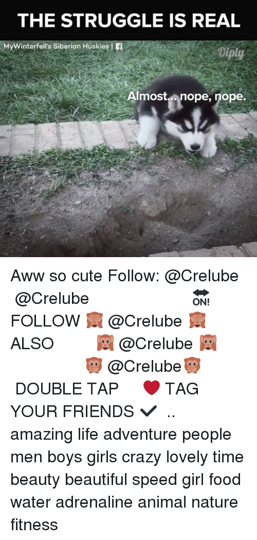 Nopes: THE STRUGGLE IS REAL  MyWinterfell's Siberian Huskies f  Diply  Almostnope, nope.  Ain Aww so cute Follow: @Crelube ⠀⠀⠀⠀ ⠀@Crelube ⠀⠀⠀⠀ ⠀⠀ ⠀⠀⠀⠀⠀ ⠀⠀🔛FOLLOW 🙈 @Crelube 🙈 ⠀⠀⠀⠀ ⠀⠀⠀⠀⠀⠀ALSO ⠀ 🙉 @Crelube 🙉 ⠀ ⠀⠀ ⠀ ⠀ ⠀ ⠀ ⠀ ⠀⠀⠀⠀⠀ 🙊 @Crelube🙊 ⠀⠀⠀⠀ ⠀ ⠀⠀⠀⠀ DOUBLE TAP ❤️ TAG YOUR FRIENDS ✔️ ⠀⠀⠀⠀ .. amazing life adventure people men boys girls crazy lovely time beauty beautiful speed girl food water adrenaline animal nature fitness