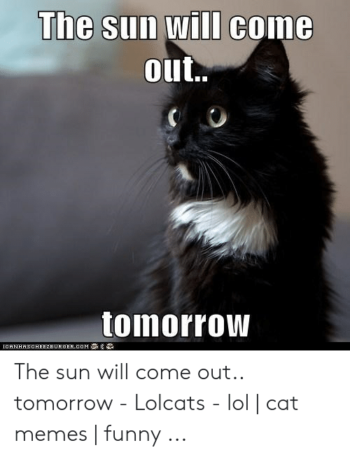 Sun Will Come Out Tomorrow: The Sun will come  out..  tomorrOW  ICHINHHSCHEE2BURGER COM The sun will come out.. tomorrow - Lolcats - lol | cat memes | funny ...