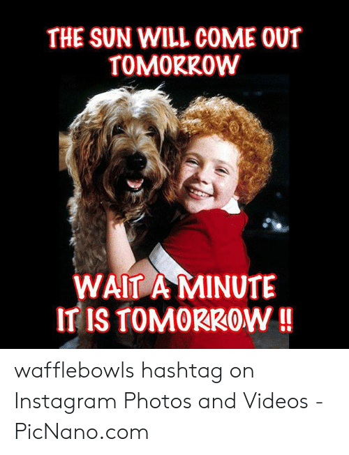 Sun Will Come Out Tomorrow: THE SUN WILL COME OUT  TOMORROW  WAIT A MINUTE  IT IS TOMORKOW!! wafflebowls hashtag on Instagram Photos and Videos - PicNano.com