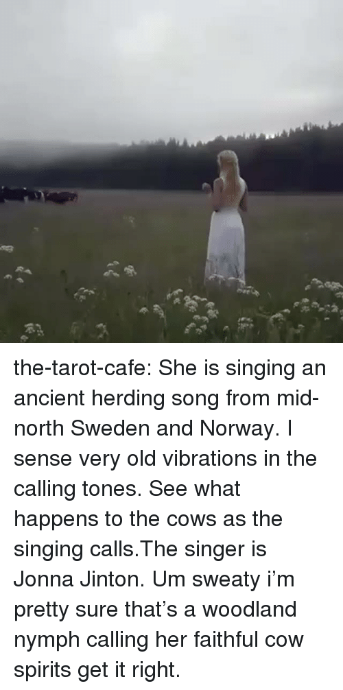 herding: the-tarot-cafe:    She is singing an ancient herding song from mid-north Sweden and Norway. I sense very old vibrations in the calling tones. See what happens to the cows as the singing calls.The singer is Jonna Jinton.    Um sweaty i'm pretty sure that's a woodland nymph calling her faithful cow spirits get it right.