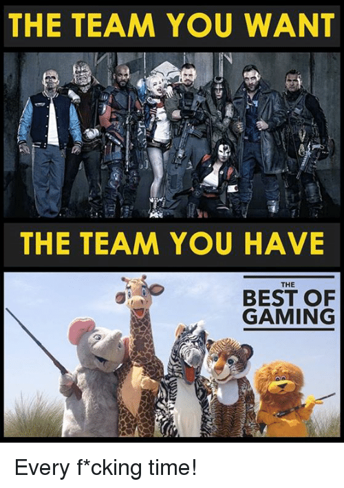 Video Games, Best, and Game: THE TEAM YOU WANT  THE TEAM YOU HAVE  THE  BEST OF  GAMING Every f*cking time!