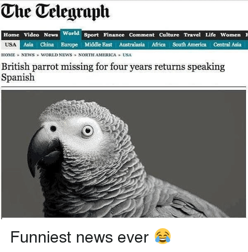 Africa, America, and Finance: The Telegraph  Home Video News World Sport Finance Comment Culture Travel Life WomenI  Asia | China Europe Middle East Australasia Africa South America Central Asia  HOME » NEWS  WORLD NEWS » NORTHAMERICA » USA  British parrot missing for four years returns speaking  Spanish Funniest news ever 😂