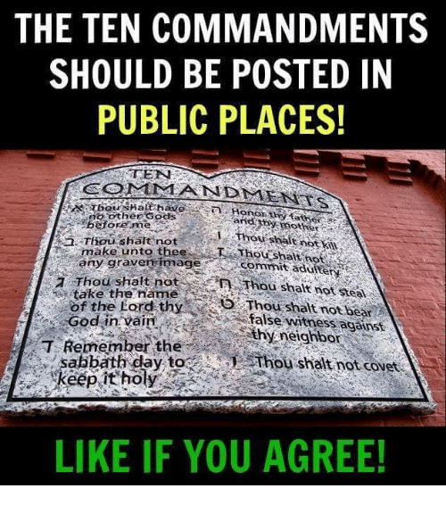God, Memes, and Bear: THE TEN COMMANDMENTS  SHOULD BE POSTED IN  PUBLIC PLACES!  CONIMA N DMENİTs  otherSods  before me  Thouw salt not i  make unto thee  commitaduiterty  any gravenimage  7 Thou shalt not  AThou shalt not stea  take the name  ofthe Lord thy  ' /hou shalt not bear  false witness aganst  God in vain  Why, neighbor  T Remember the  sabbath day toThou shalt not covet  LIKE IF YOU AGREE!