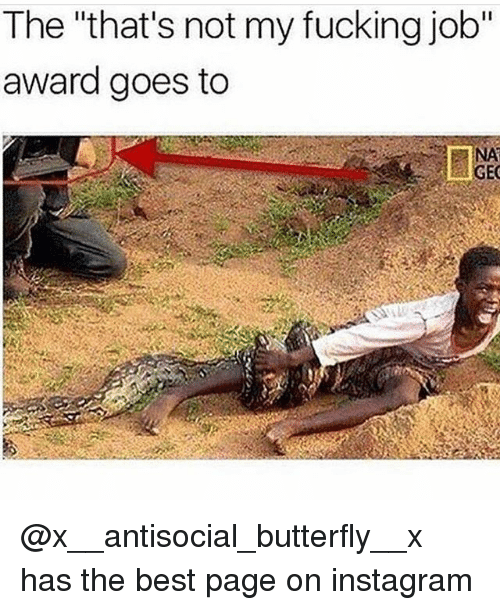 "Fucking, Instagram, and Memes: The ""that's not my fucking job""  award goes to  NA  GEC @x__antisocial_butterfly__x has the best page on instagram"