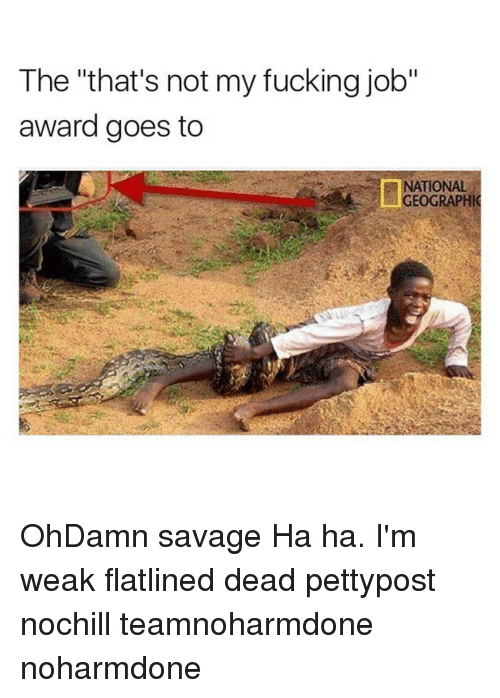 "Memes, 🤖, and Job: The ""that's not my fucking job""  award goes to  NATIONAL  GEOGRAPHIC OhDamn savage Ha ha. I'm weak flatlined dead pettypost nochill teamnoharmdone noharmdone"