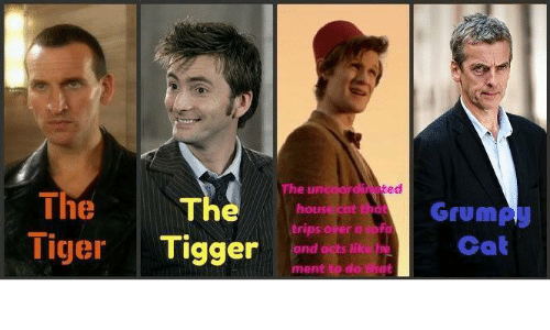 Tiggering: The The  Tiger Tigger nn  The unc  ed  Grump  Cat  ouse cat  trips over a sofo  nd acts like  ment to do thdt