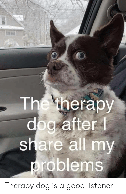 listener: The therapy  dog after  share all my  roblems Therapy dog is a good listener